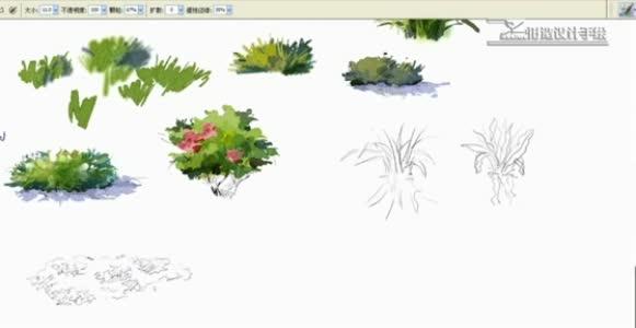 灌木丛的卡通图片