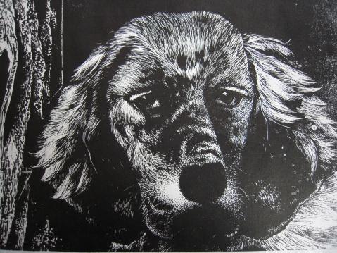 黑白木刻版画简单动物