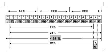 我是初学者,请问24孔的口琴音符怎么找啊?