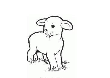 羊手绘黑白
