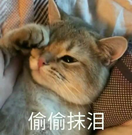 求一个表情包 就是一个外国人侧躺在床上看手机在哭的图片
