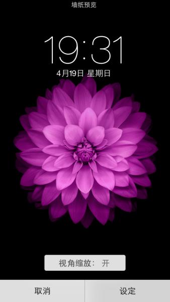 谁有苹果6手机的屏保图片紫色的花那个
