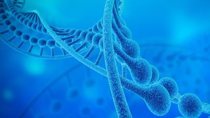 基因的单一化和精英化, 才是人类的慢性瘟疫吗?的头图