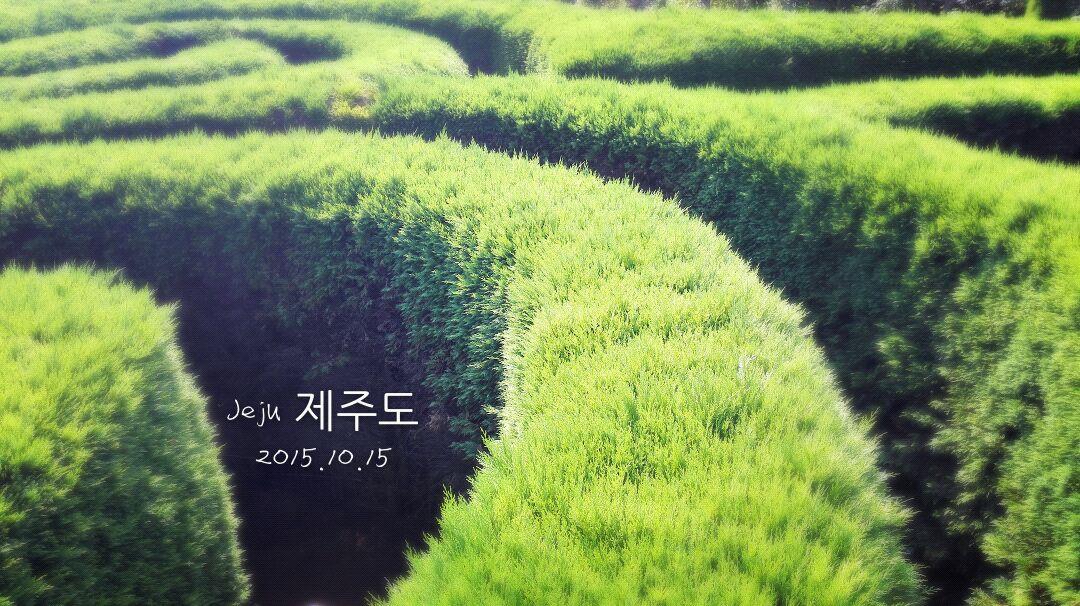 游走在韩国济州岛_旅行画册旅行图片_百度旅游