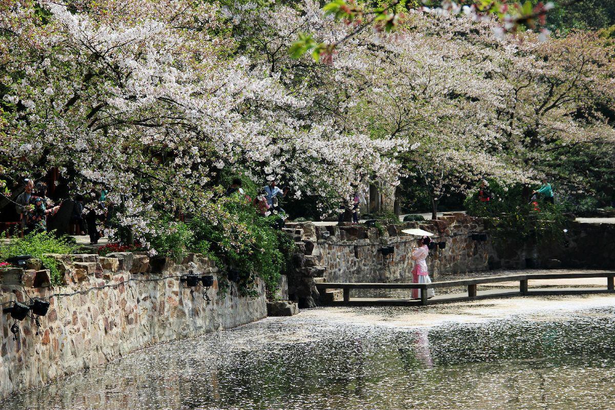 【无锡】春暖花开的日子