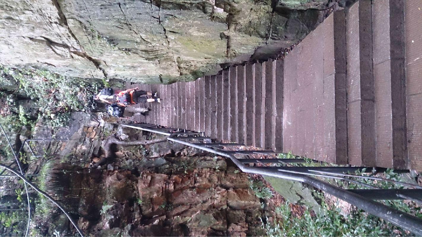 张家界-森林公园_旅行画册旅行图片_百度旅游