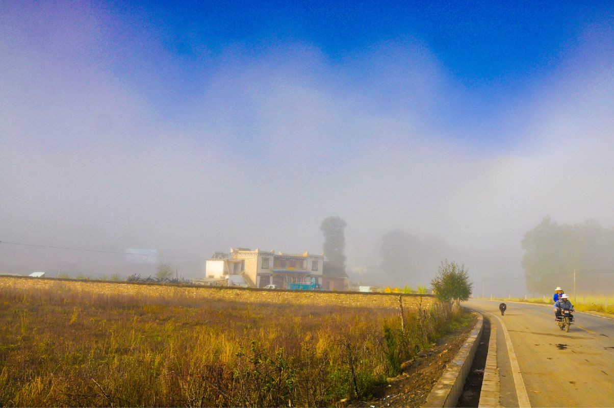 大雾笼罩着一切,却也成就了一种不一样的画面.图片图片