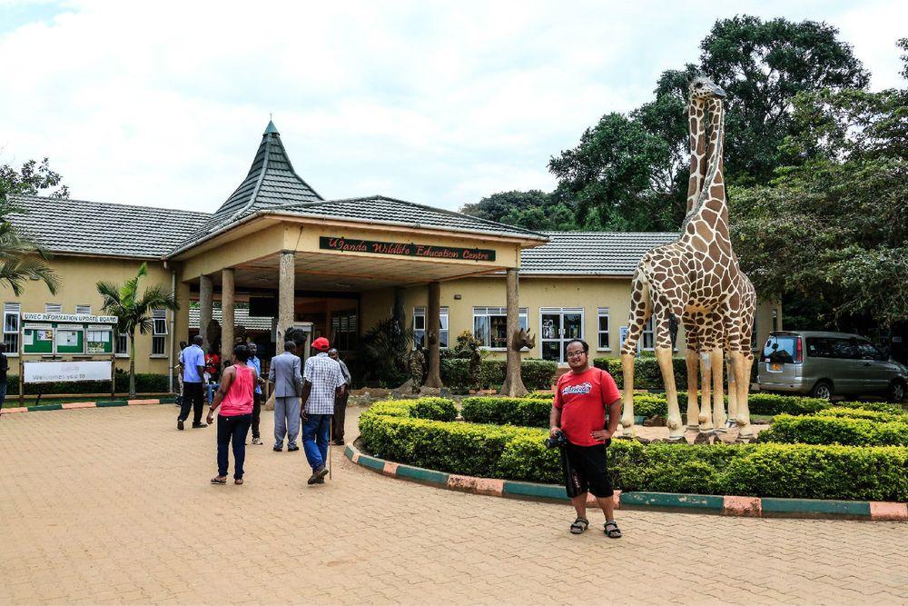 动物园大门口图片