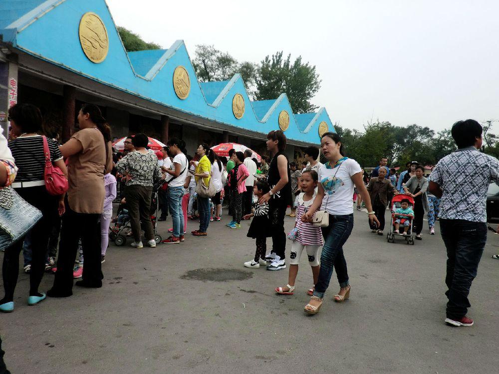 秦皇岛野生动物园自驾一日游