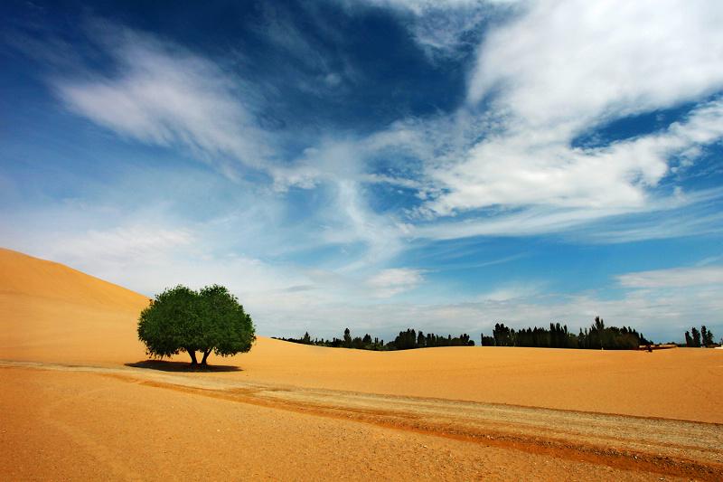 背景 壁纸 风景 沙漠 天空 桌面 800_533