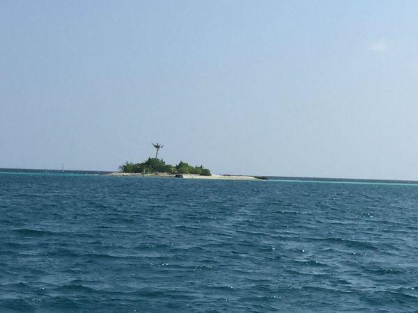 萨芙莉岛的小岛图片