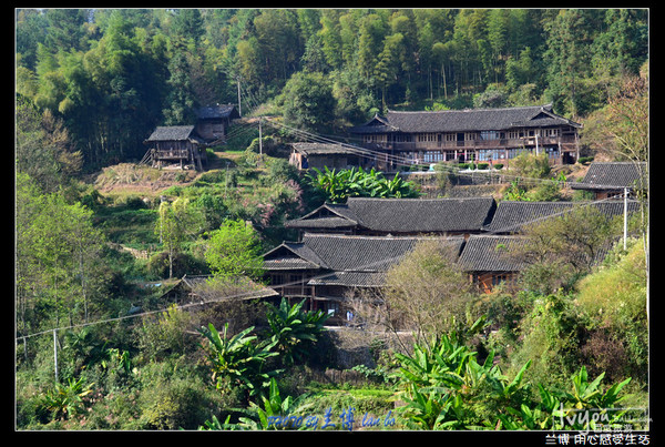 湘西木房子图片