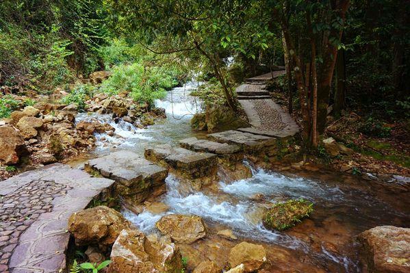 水上森林,又是这样人在水中的石上行走的美妙感觉~石头湿滑,水流速较图片