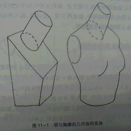 汉服平面款式图手绘