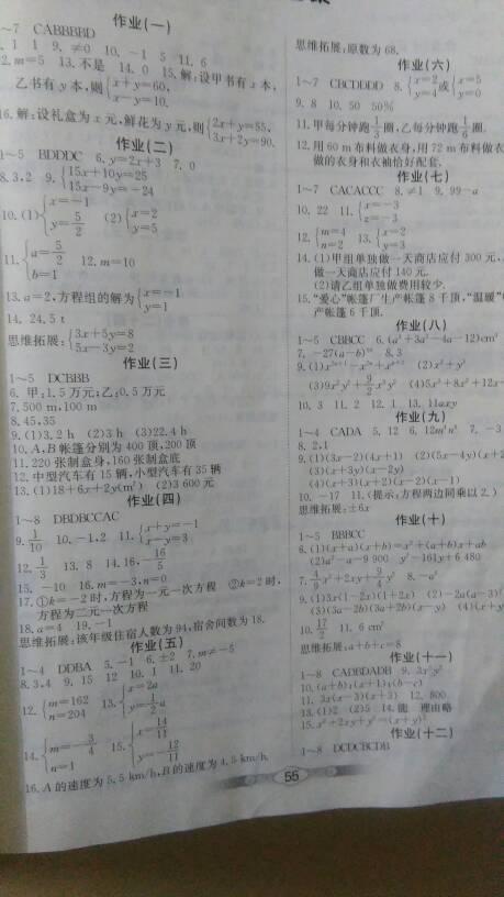 七年级下册数学暑假作业答案北大师版