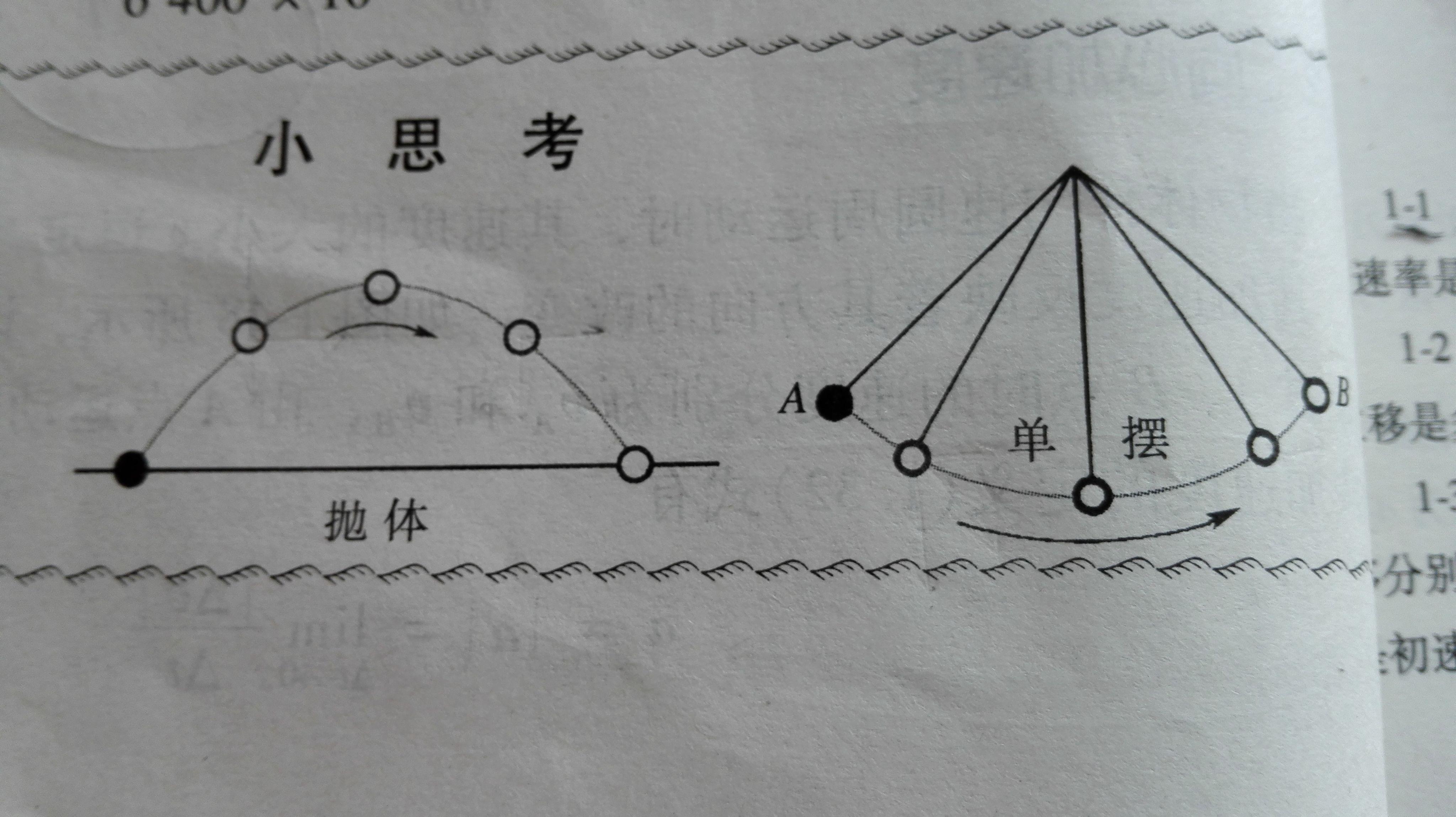 在图中定性的画出抛体和单摆运动各阶段加速度矢量的大小和方向,谢谢