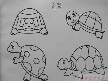 小乌龟怎么画
