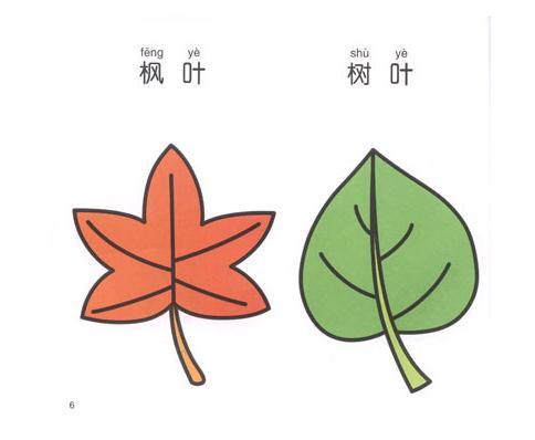 怎么画树叶