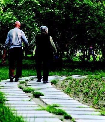 求,一对老人手牵手 散步图片 背影的!