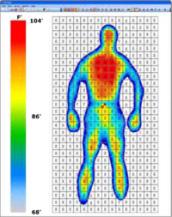 人体正常体温_求男性正常情况下的体温分布图,就是一个人体轮廓,然后里面红的黄的
