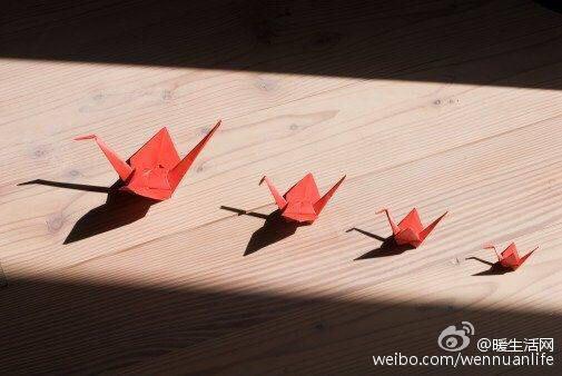 求千纸鹤唯美图片,比如