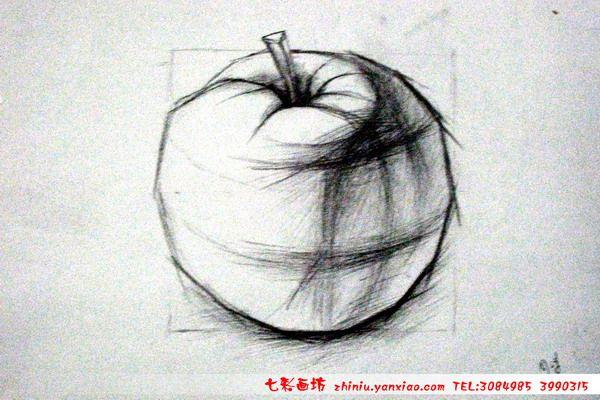 跪求几张苹果的结构素描图片.要画得深入的,很急!
