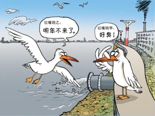 鱼儿作文水资源求救漫画污染_百度知道漫画禁闭图片
