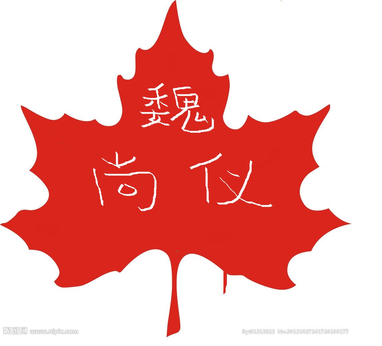 剪纸枫树叶图案步骤