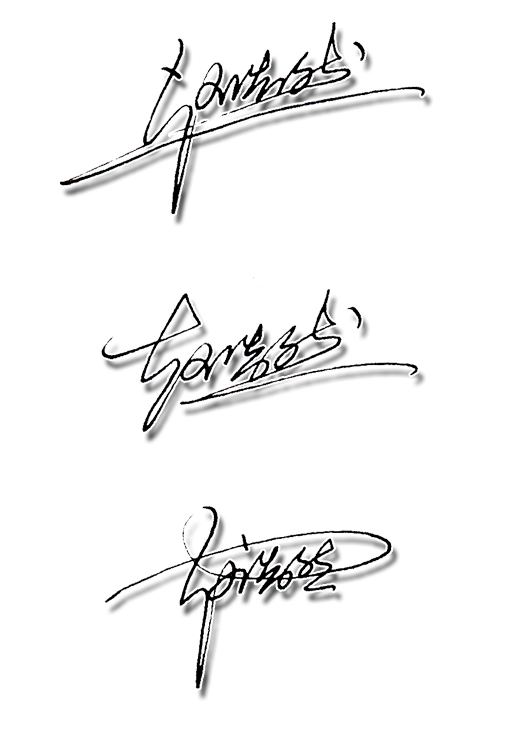 赵浩然艺术签名设计手写稿图片