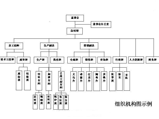 公司组织结构图模板
