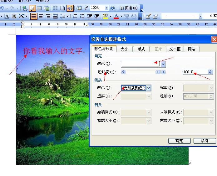 如何在word文档的图片上添加文字?