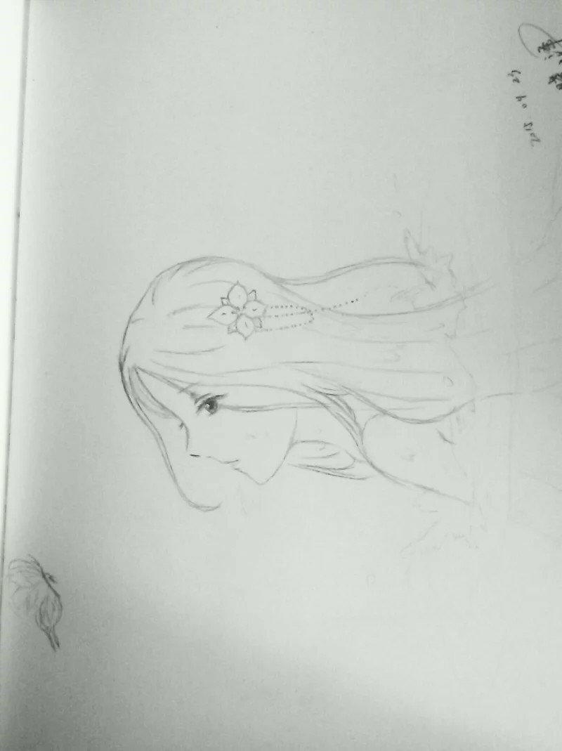 古代女生的动漫铅笔画,不要很复杂的