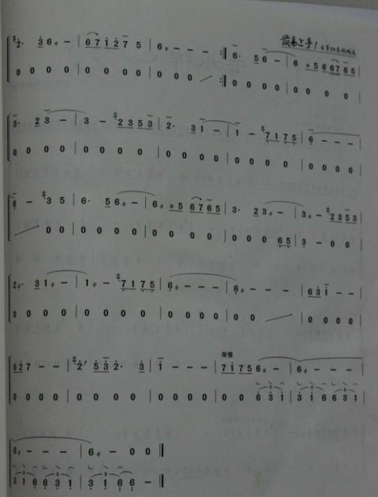 """求:谁有古筝版的""""琵琶语""""简谱啊?技巧稍简单点的, 大恩不言谢"""