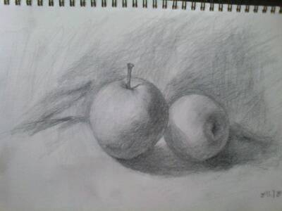 谁来评价一下我的这张苹果素描画?图片