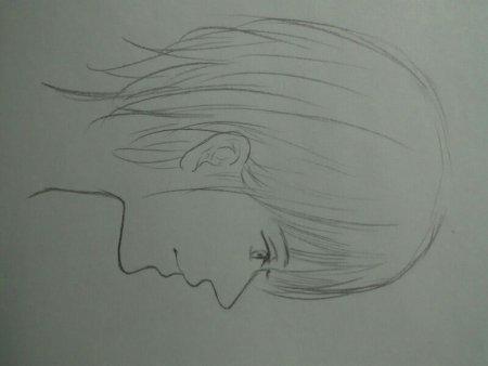 简笔画 手绘 素描 线稿 450_338图片