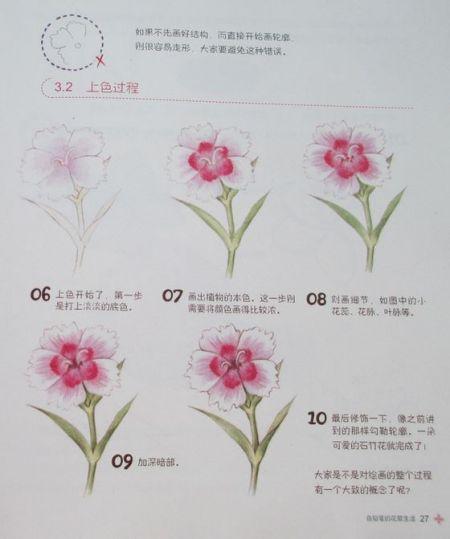 求彩铅花卉教程!花花花