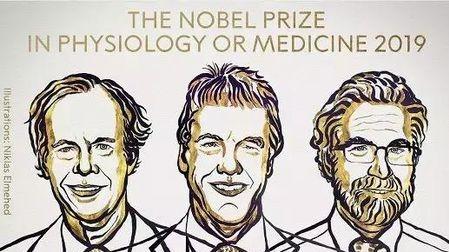 打破人类对吸氧的一无所知!英美3位科学家拿下诺奖