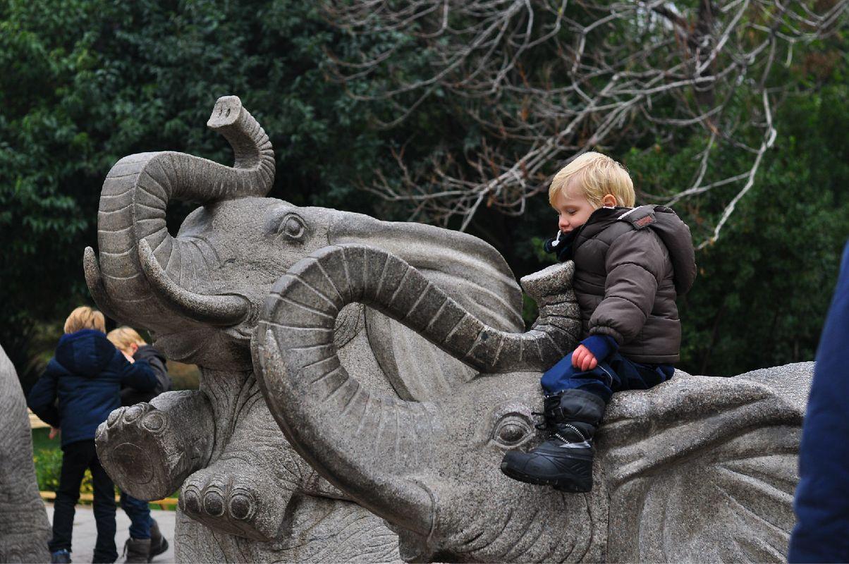 北京2015-北京动物园_旅行画册旅行图片_百度旅游