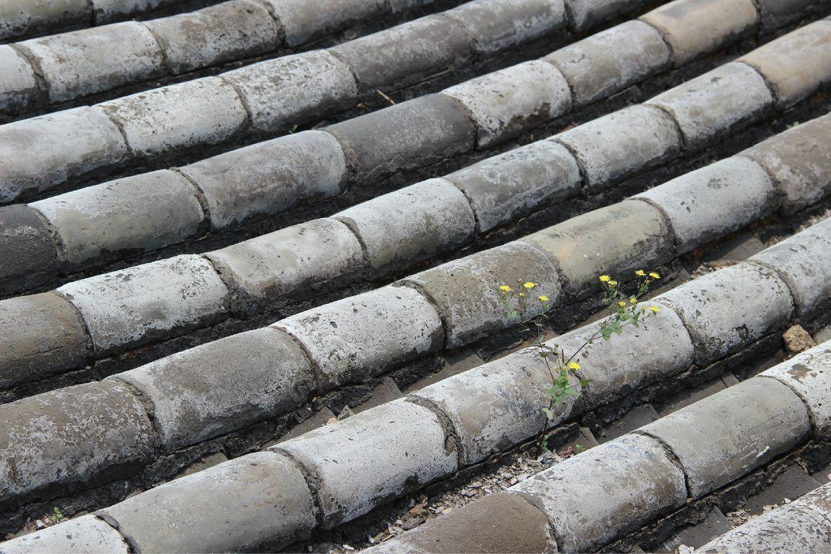 屋顶,瓦片.图片