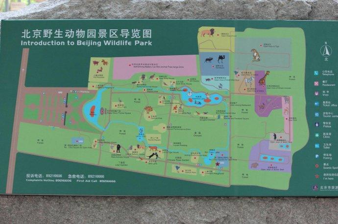 天津-北京大兴野生动物园一日自驾游