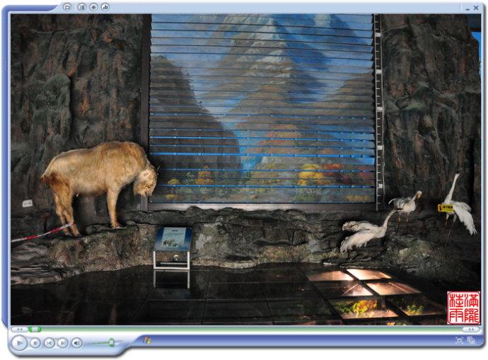 游记攻略  北京动物园游记  北京动物园    动物园科普馆开在休闲性