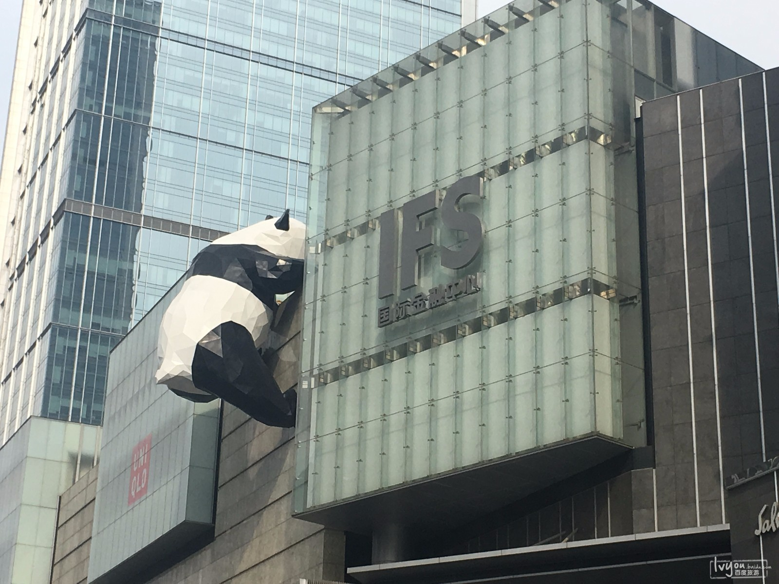 ifs的大熊猫~~~优雅的屁屁