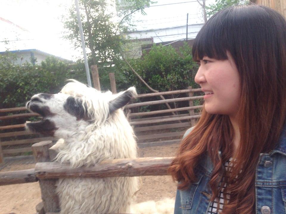郑州动物园_旅行画册旅行图片_百度旅游