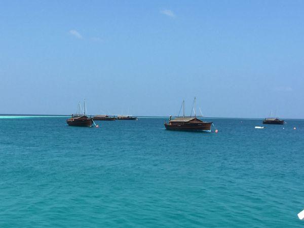 萨芙莉岛的船屋图片