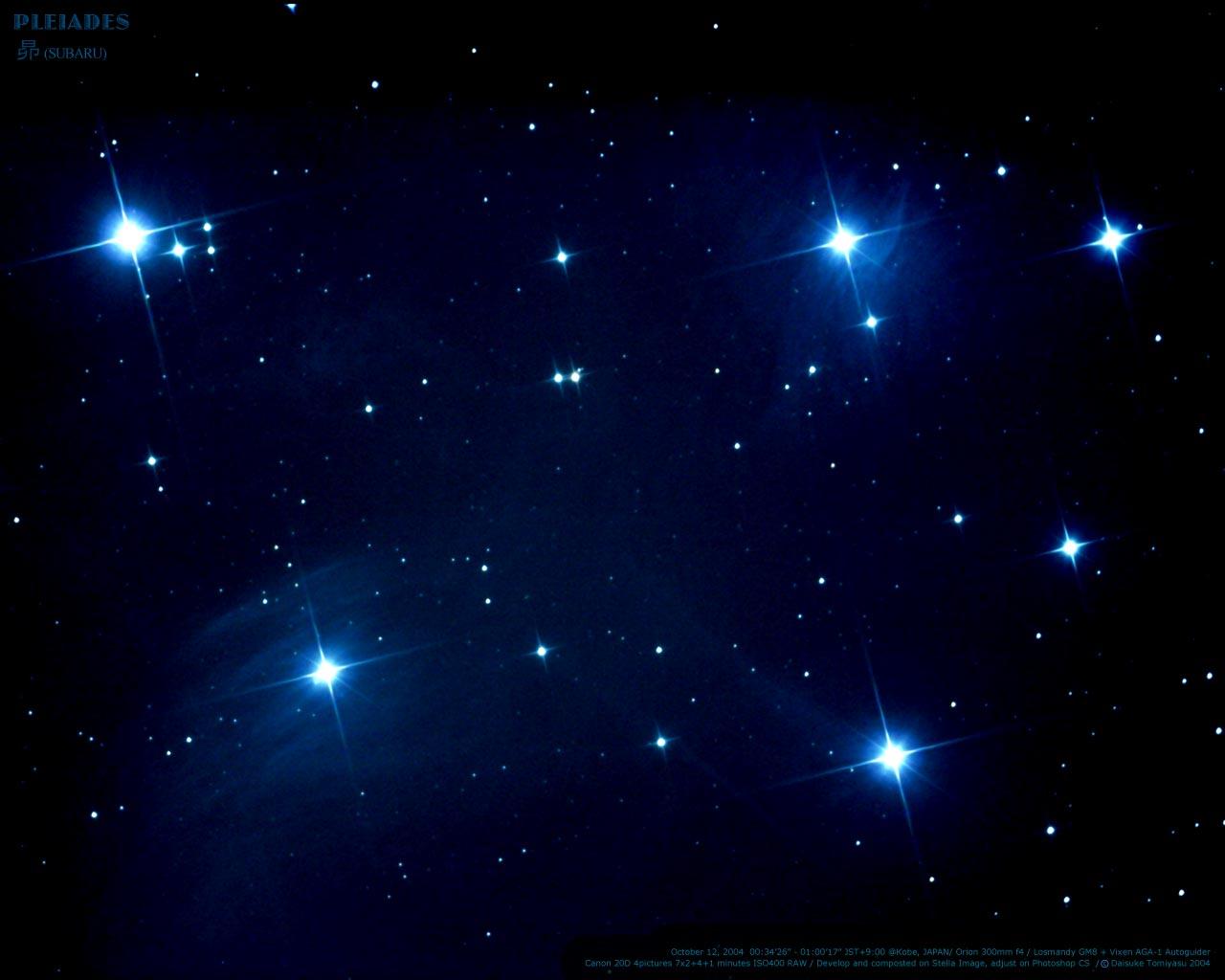 星座座射手的宠物十二星座的样子图片