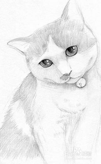 小猫怎么画简单又可爱素描