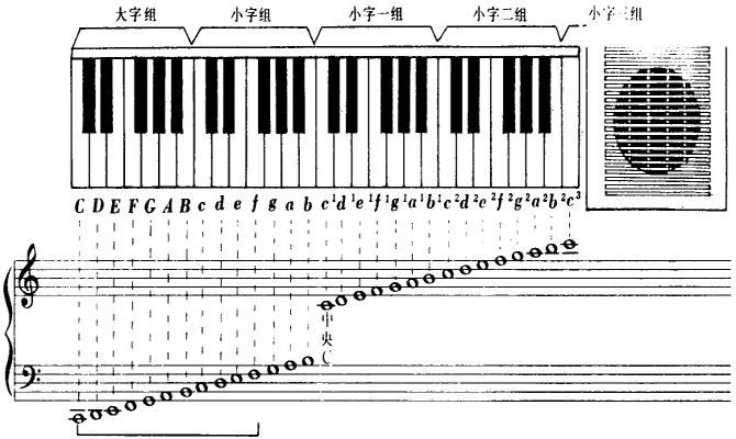 37键电子琴的音调图片