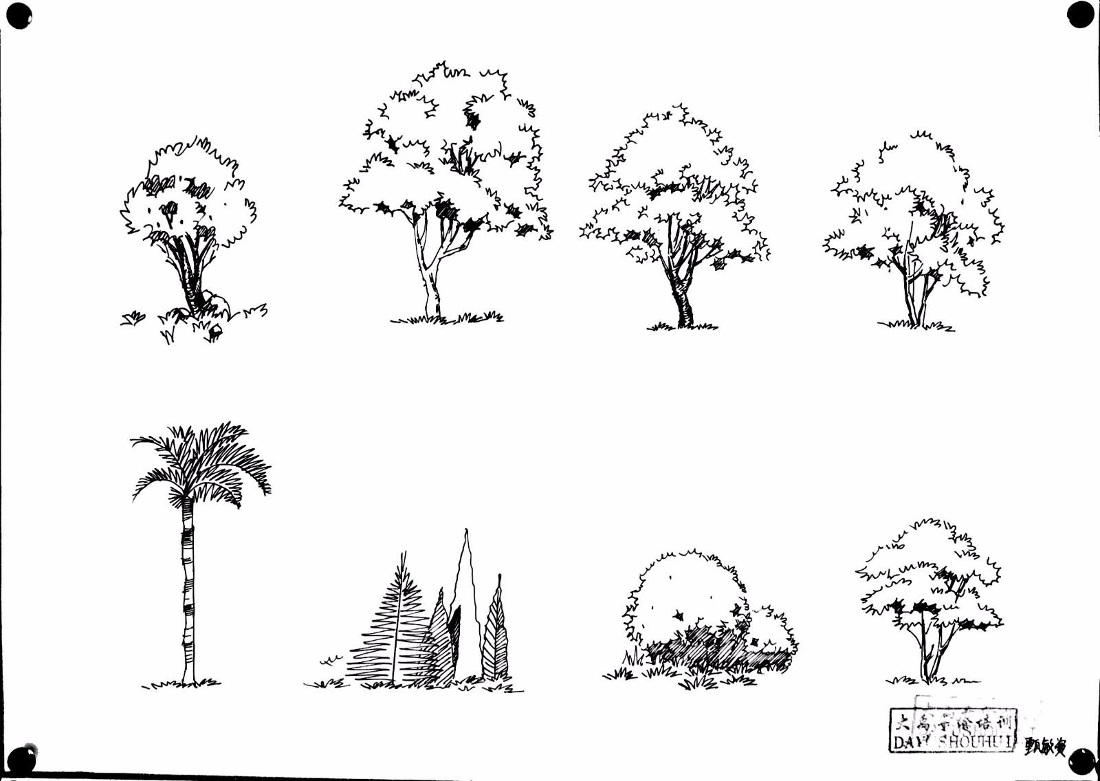 如何简单手绘图片花草树木