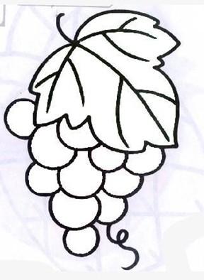 如何用简笔画 画葡萄