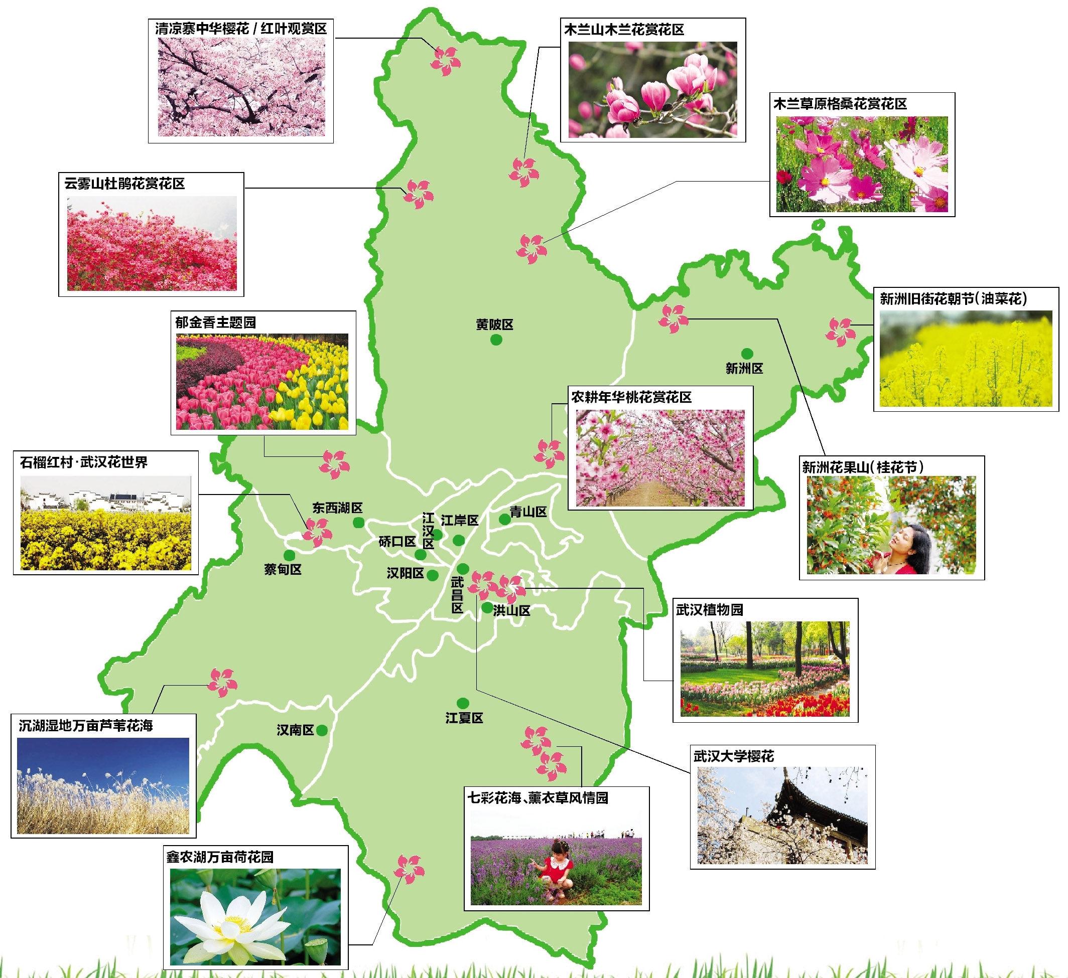 武汉赏花地图的交通图片